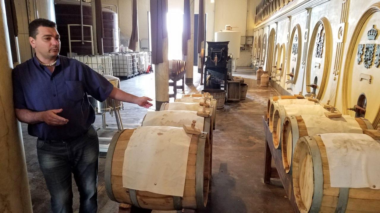 Mendoza: Olivícola Laur